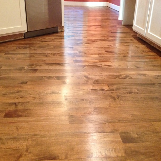 Hardwood Floor Refinish Project With Dark Brown Stain On Maple In Ada Michigan Today